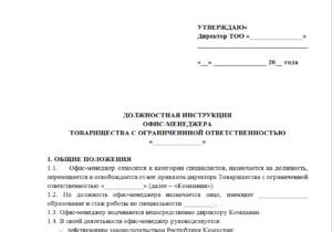 Должностная инструкция директора издательства