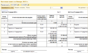 Кассовая книга учреждения бюджетного учета