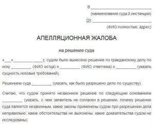 Апелляционная жалоба на решение мирового судьи о разделе совместно нажитого имущества