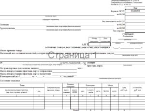 Форма акта о постановке средств измерений энергопредприятия на длительное хранение