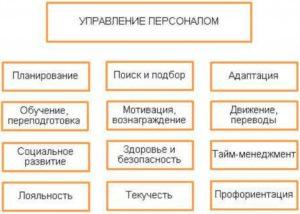 Должностная инструкция заместителя директора по управлению персоналом