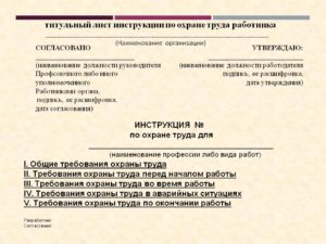 Примерный вид титульного листа инструкции по охране труда для работника