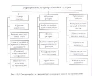 Положение о формировании резерва руководящих кадров предприятия и работе с ним