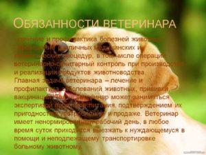 Должностная инструкция ветеринарного врача