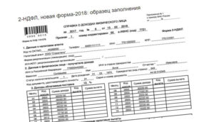 Справка о доходах семьи. Форма N 1502005