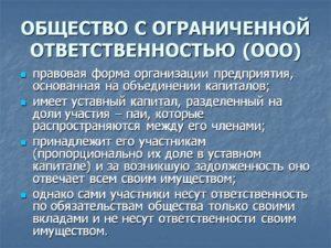 Положение о филиале общества с ограниченной ответственностью (пример)