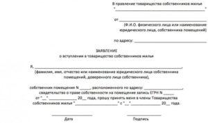 Заявление о вступлении в члены товарищества собственников жилья