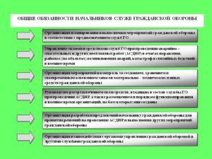 Должностная инструкция начальника (руководителя) отдела мобилизационной подготовки аварийного центра гражданской обороны и чрезвычайных ситуаций