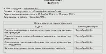 Индивидуальный план работы сотрудника на период испытания (примерный образец)