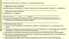 Примерная форма контракта для управляющего проектом