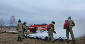 Производственное задание авиаотделению на тушение лесного пожара. Форма N 8