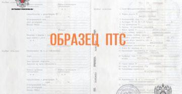 Паспорт транспортного средства (образец)