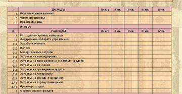Смета доходов и расходов организации