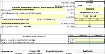 Отчет о целевом использовании полученных средств. Форма N 6
