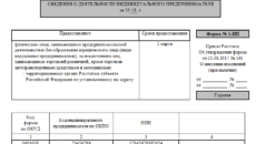 Сведения о деятельности индивидуального предпринимателя. Форма N 1-ИП